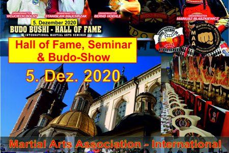 budo bushi flyer 2020